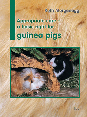 cover book guinea pigs
