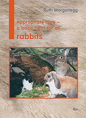 cover book rabbits